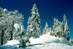 Dick James's Ebbetts Pass Winter Wonderland Tour!