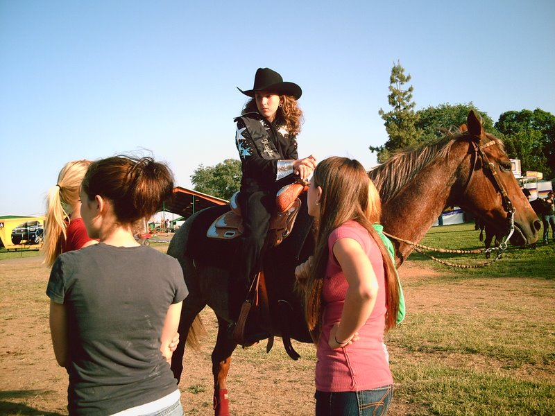 The 2007 Saddle Queen Comp.
