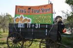 Trick or Treat Street and Pumpkin Junction