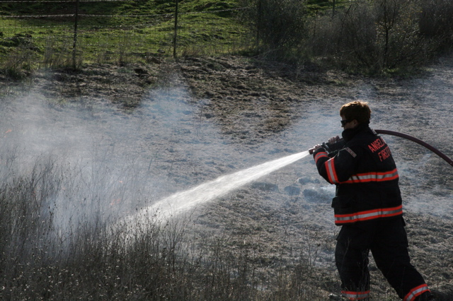 Vegetation Fire